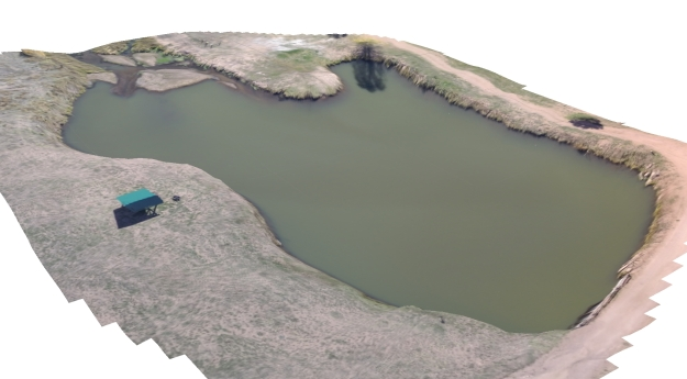3D Aerial view of the pond. Elevation data collected outside the pond with a drone